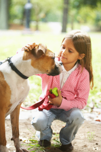Children are the Most Common Victims of Dog Bites